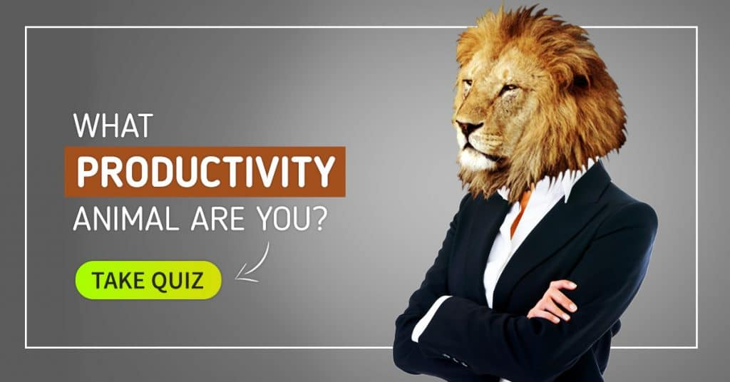 productivity animal quiz
